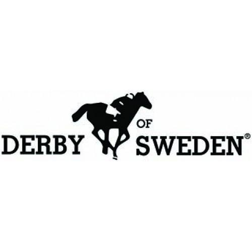 Derby Sweden