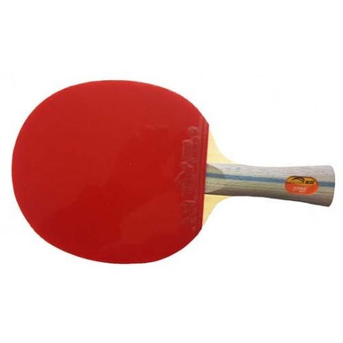 Sydsport Racket ITTF